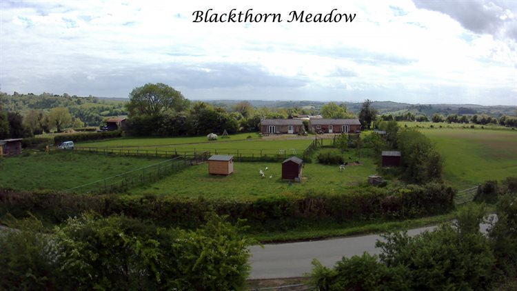Blackthorn Meadow Aerial View