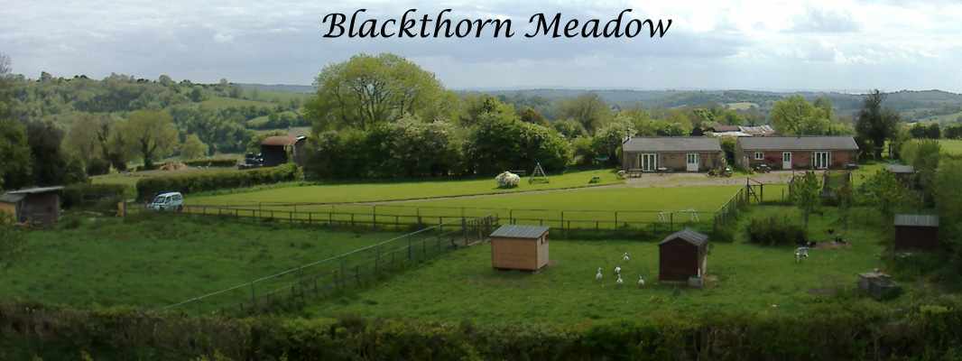 Blackthorn Arial View Banner
