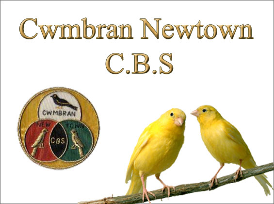 Image of Cwmbran Newtown Caged Bird Society